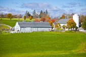 stock photo of dairy barn  - Generic looking colonial style dairy farm in New England - JPG