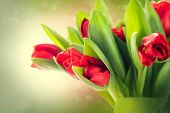 foto of bouquet  - Spring Flowers bunch - JPG