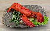 picture of lobster tail  - Boiled lobster served with thyme and rosemary - JPG