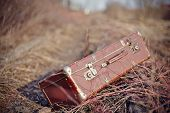 picture of old suitcase  - Old fashioned forgotten a suitcase lie forgotten in a faded grass - JPG