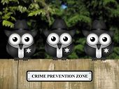 image of policeman  - Comical British bird policemen with crime prevention zone sign perched on a timber garden fence against a foliage background - JPG