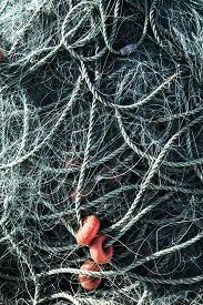 picture of floating  - Fishing Net With Ropes And Floats Fishing Net With Ropes And Floats - JPG
