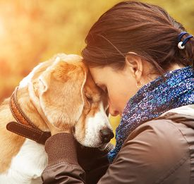 foto of hug  - A woman hugs her dog by the ears playfully - JPG