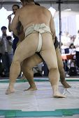 picture of loin cloth  - A pair of sumo wrestlers grappling at an exhibition match