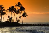 stock photo of beach sunset  - Hawaiian Sunset by the calm waters of the Pacific - JPG