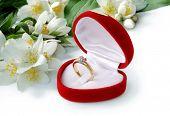 pic of diamond ring  - ring  - JPG