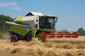 Harvesting. Combine Harvester Working On A Wheat Field. poster