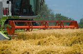 Harvest Of Wheat Field At Countryside. Combine Harvester Machine Harvesting Ripe Wheat Crops. poster