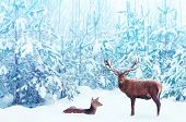 Noble Deer Male And Female In A Snowy Winter Blue Forest. Artistic Christmas Fantasy Image In Blue A poster