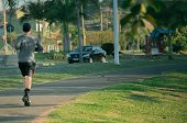 Man Jogging At The Park In The Morning. Showing A Healthy Lifestyle With A Lot Of Exercising. The Su poster