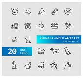 Animals And Plant Icons. Set Of Line Icons. Dog, Cat, Tree. Nature Concept. Vector Illustration Can  poster