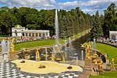 picture of samson  - Cascading Fountains in Peterhof near Saint - JPG