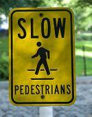 Slow Pedestrians poster