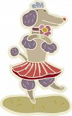 pic of poodle skirt  - A dancing poodle wearing a skirt on a white background - JPG