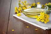 stock photo of rape-seed  - Rapeseed oil with flower of rapeseed - JPG