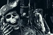 foto of pirate hat  - Two Skeleton Pirates Portrait - JPG