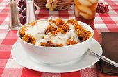 stock photo of enchiladas  - A bowl of enchilada rice casserole on a picnic table - JPG