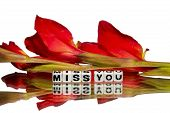 stock photo of miss you  - Missing you message with green and red flowers.