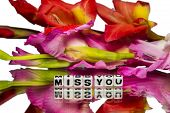 foto of miss you  - Miss you with red and pink colored flowers on white and reflective surface - JPG