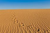 foto of footprints sand  - Sand dunes of Mesquite Flat in Death Valley Desert  - JPG