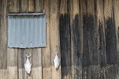 Fish Drying Outside Rustic Fisherman House