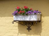 picture of planters  - Beautiful classical design planter flowerpot on a bricks wall - JPG