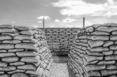 pic of world war one  - Trench of death world war 1 belgium flanders fields - JPG