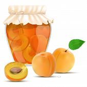 pic of apricot  - Apricot compote in a jar and fresh apricots  - JPG