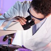 stock photo of microscope slide  - Researcher looking at the microscope slide in the life science laboratory - JPG
