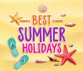 picture of shell-fishes  - Best Summer Holidays Colorful Title Words in the Beach Yellow Sand with Slippers - JPG