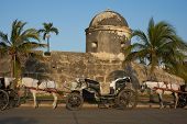 stock photo of carriage horse  - Horse drawn carriages used by tourists waiting alongside the fortified walls of the historic Spanish colonial city of Cartagena de Indias in Colombia - JPG