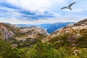 picture of fjord  - Mountains on the way to the Cliff Preikestolen in fjord Lysefjord  - JPG