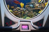 pic of life-boat  - Fishes in submarine window  - JPG