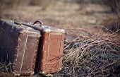 pic of old suitcase  - Two old shabby suitcases stand forgotten on the road in a faded grass - JPG