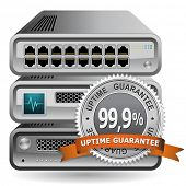 Network Equipment Icon with 99,9 % Uptime Guarantee Sing