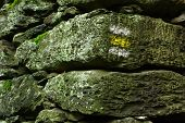 Known yellow tourist sign on old stone wall in famous Czech National Park Sumava - Europe poster