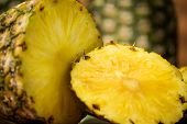 Tropical Fruit Pineapple - Ananas Comosus- Split Into Slices poster