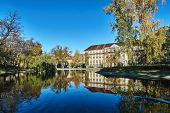 Trees In The Park With Colorful Autumn Leaves On A Pond And A Tenement House In Poznan poster