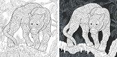 Animal. Coloring Page. Coloring Book. Colouring Picture With Panther Drawn In Zentangle Style. Antis poster