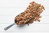 Dry pet food. Dry kibble food in scoop. Top view. poster
