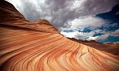 stock photo of buckskin  - Arizona nature formation The Wave in North Coyote Buttes - JPG