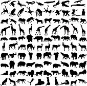 stock photo of animal silhouette  - Hundred silhouettes of wild animals from Africa - JPG
