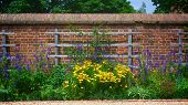 stock photo of slave-house  - Flowers along the wall of George Washington - JPG