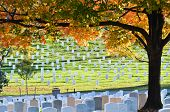 foto of arlington cemetery  - Arlington National Cemetery near to Washington DC - JPG
