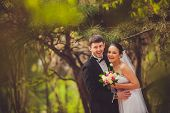 image of conifers  - bride and groom in conifer trees park - JPG