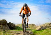 stock photo of race track  - Cyclist Riding the Bike on the Beautiful Spring Mountain Trail - JPG