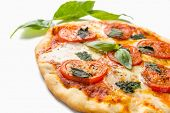 image of take out pizza  - Delicious and Beautiful Margarita Pizza  Isolated on White Background - JPG
