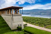 pic of british culture  - Terrace overlooking a modern vineyard and Lake Okanagan in British Columbia Canada - JPG