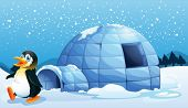 stock photo of igloo  - Illustration of a penguin near the igloo - JPG