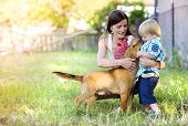 pic of puppies mother dog  - Mother and son playing with dog outside - JPG